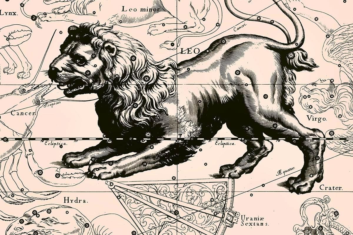 Взаимоотношения Льва